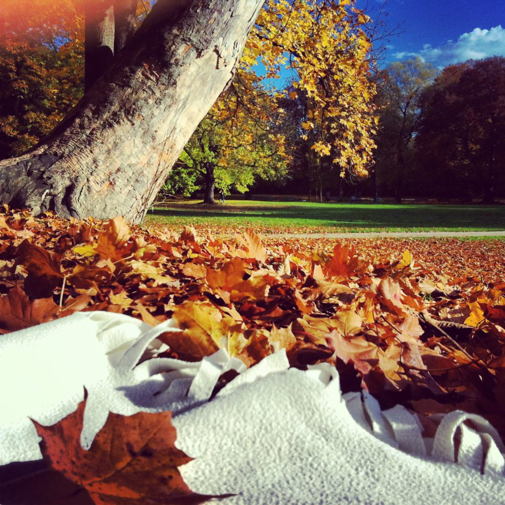 Herbsttag1