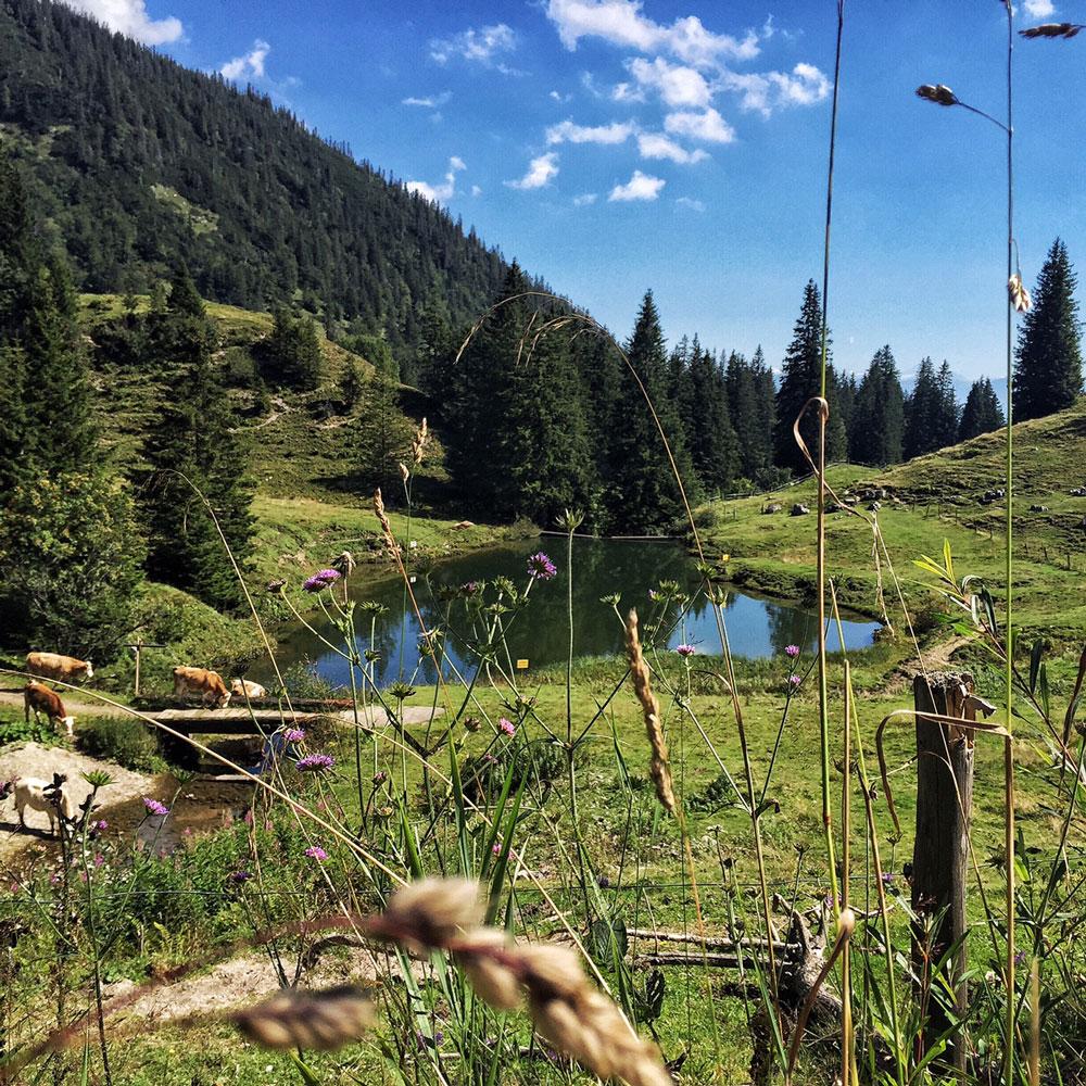 priener_huette-bergsee