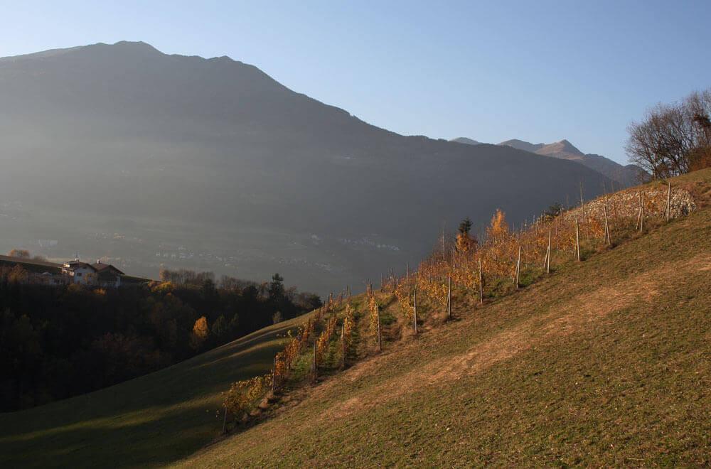 Ferien auf dem Bauernhof in Südtirol
