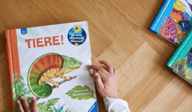 Wieso Weshalb Warum Kinderbücher für Kindergarten und Schule