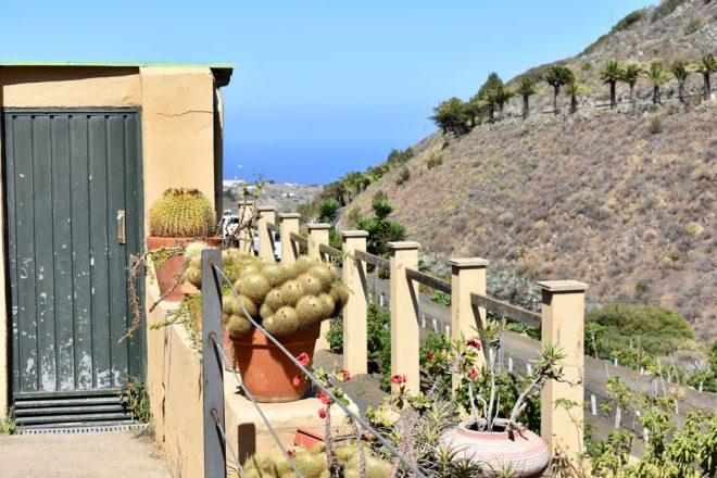 Bodega Vandama Gran Canaria
