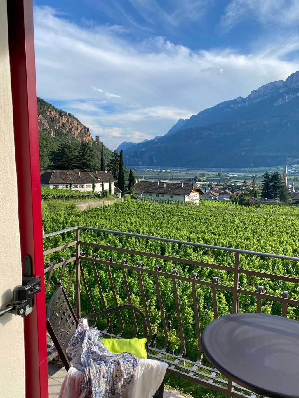 Weinanbau beim Hochbrunner Hof in Terlan bei Bozen